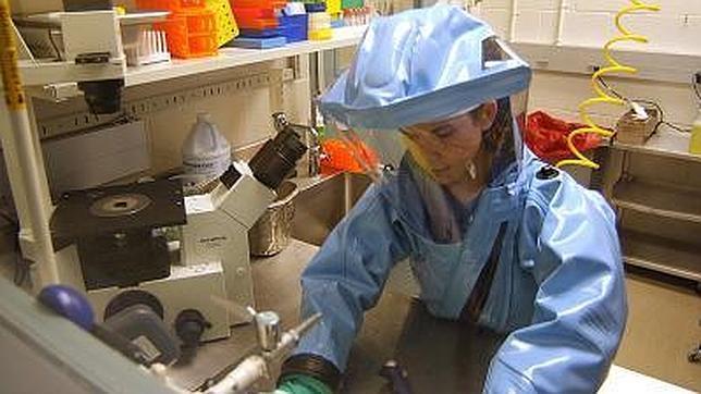 Varias vacunas y curas para el ébola se han investigado en animales y en laboratorios de nivel 4 de bioseguridad, la más elevada