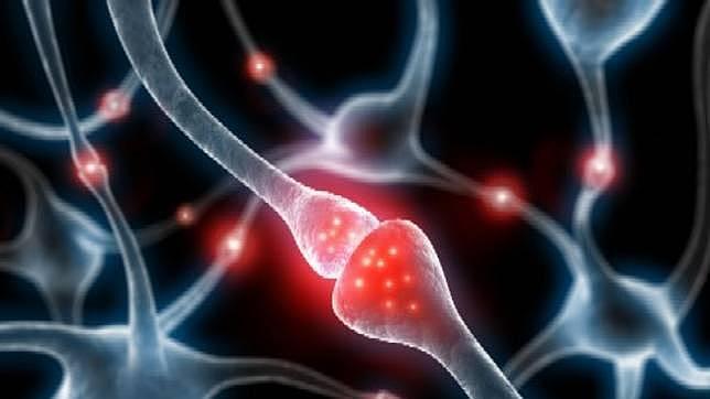 La proteína tau parece señalar un mayor riesgo de alzhéimer