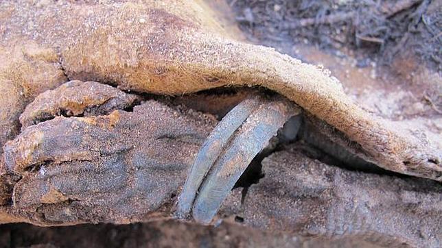 Ela necrópolis se han encontrado una momia de dos metros de altura y los restos de una niña de 18 meses