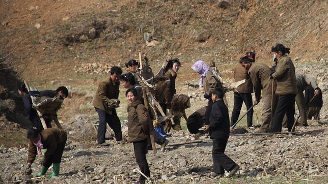 Una brigada ciudadana trabaja en la carretera de Pyongyang a Kaesong