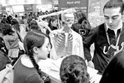 Un grupo de alumnos en una sesión práctica de anatomía celebrada en Aula