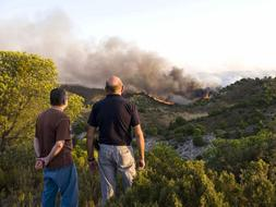 Críticas a Defensa por el fuego que arrasó en Zaragoza 6.200 hectáreas