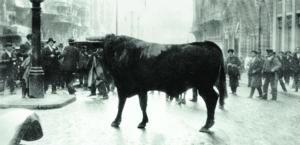 El toro que sembró el pánico