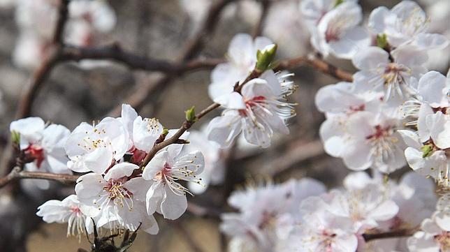 Diez destinos para estrenar la primavera