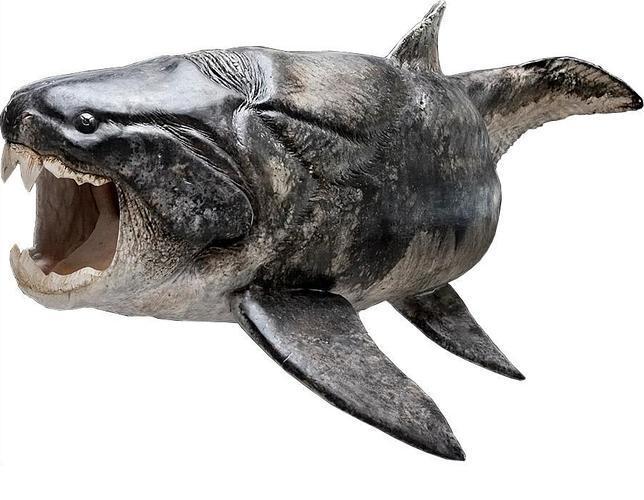 El primer pez armado hasta los dientes