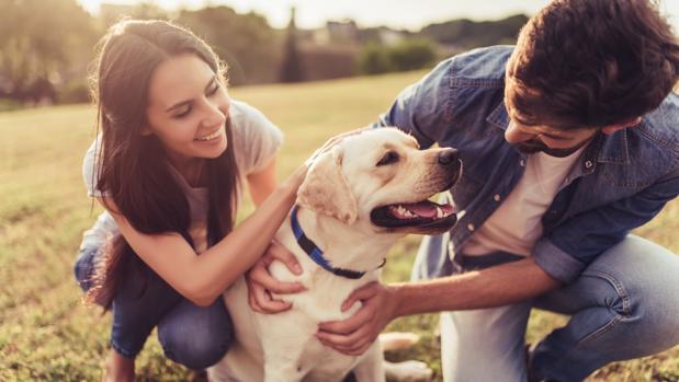 Tener un perro puede ser un paso previo a tener un hijo