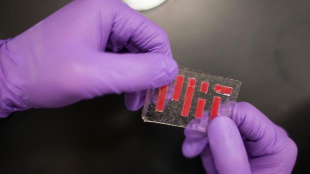 El nuevo material es elástico como la gelatino y no se seca