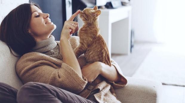 La tozoplasmosis se contagia a través de las heces de gato