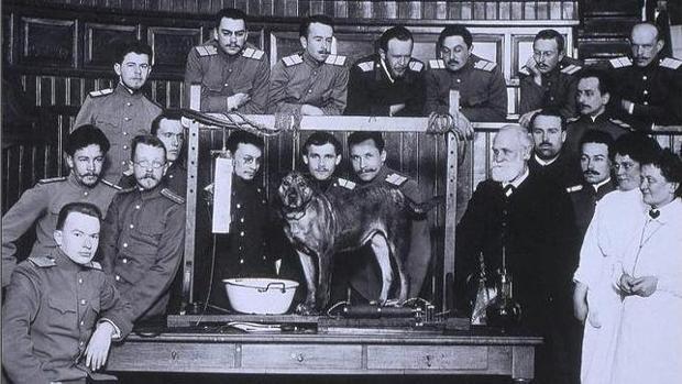 Pávlov (con traje a la derecha) en uno de sus experimentos con perros