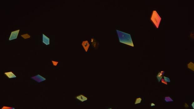 Cristales de DDT, vistos al microscopio