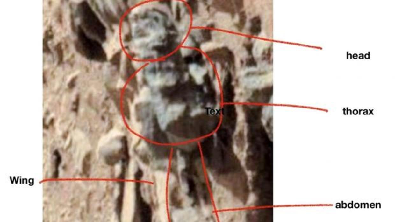 Encuentran evidencias de que Marte pudo albergar vida 2-ohiouniversi-kQAC--1240x698@abc