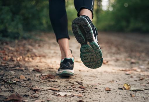 El deporte contribuye a la activación del sistema inmunitario pero el estrés influye en sentido contrario