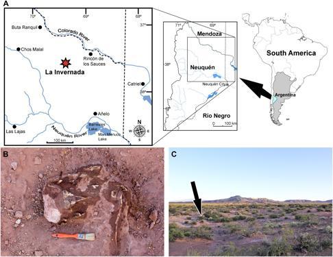Sitio del descubrimiento de Llukalkan aliocranianus