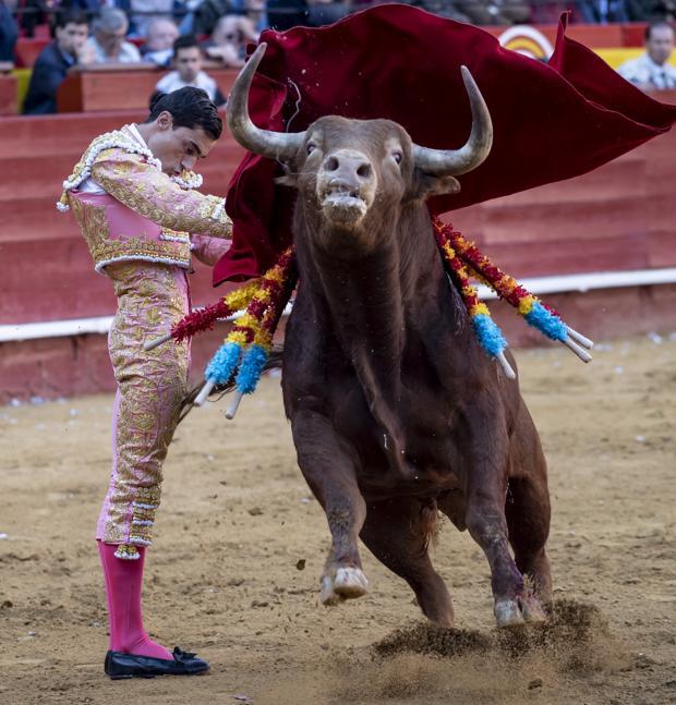 La firmeza de Paco Ureña en el inicio de faena al cuarto toro