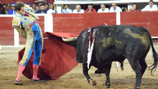 Arturo Saldívar, con el toro «Amor Infinito»
