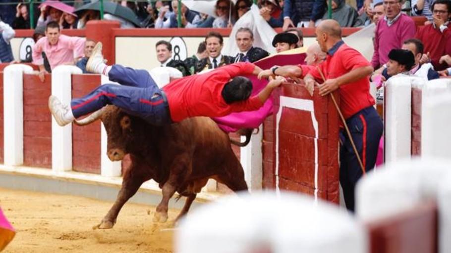 Terrorífica cogida a un monosabio con el segundo toro en Valladolid