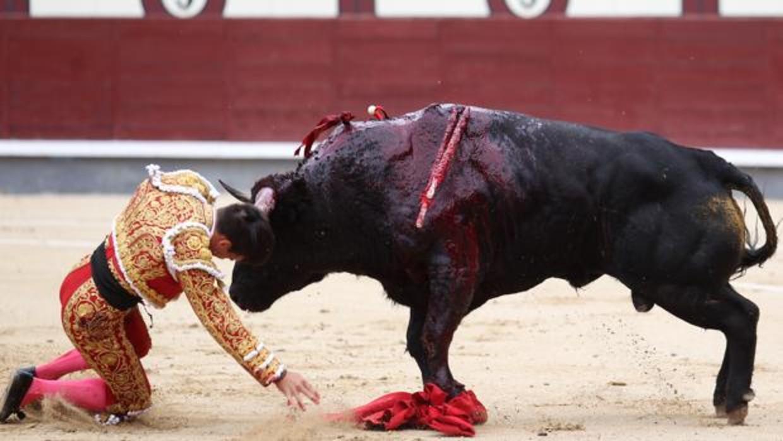 Gonzalo Caballero, tras caer herido en Las Ventas