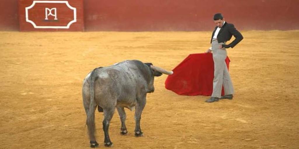 Alejandro Talavante reaparece este sábado con un toro de Adolfo en el ruedo de La 2