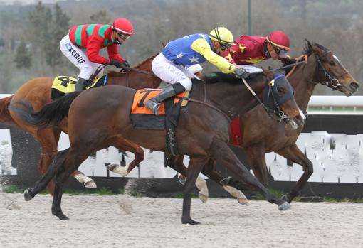 Surprize was awarded the Sanlucar Horse Racing Award