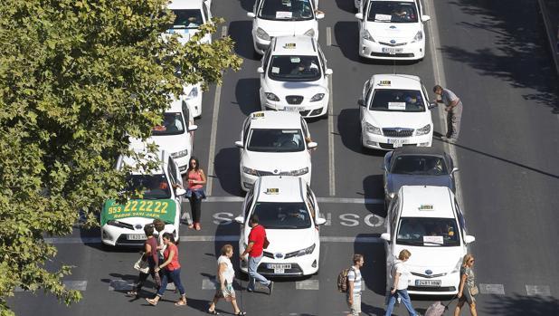 Concentración del taxi en Córdoba