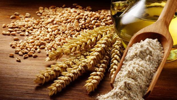 El 34% de este negocio correspondió a las masas congeladas tanto de pan como de pastelería y bollería