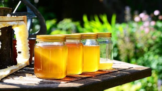 miel-etiquetas-kdDE--620x349@abc.jpg