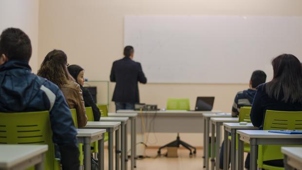 Las necesidades de formación serán diagnosticadas de la mano del propio tejido empresarial