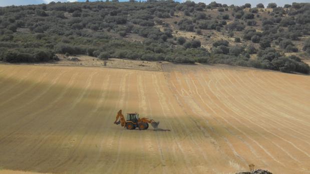 Uno de los campos entre Torrenueva y Torre de Juan Abad donde estaban proyectadas las tierras raras