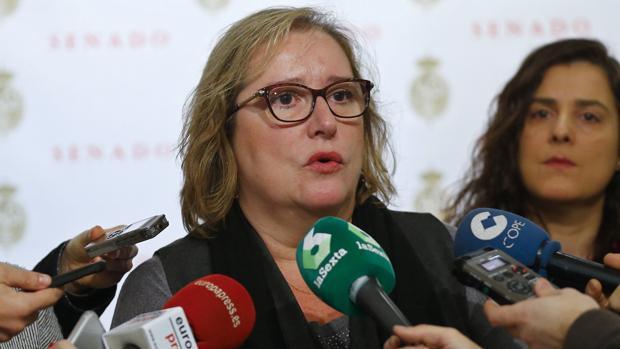 Celia Cánovas se dirige a los medios en el Senado