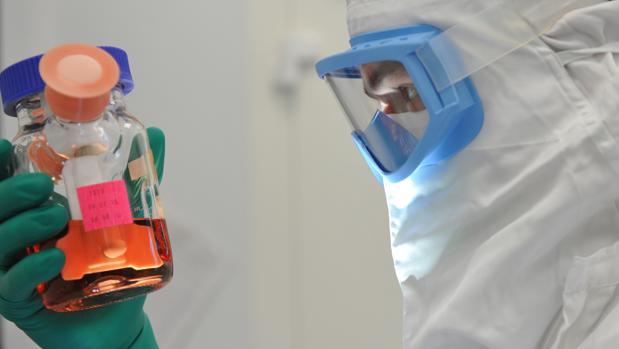 Preparación vacuna contra la tuberculosis