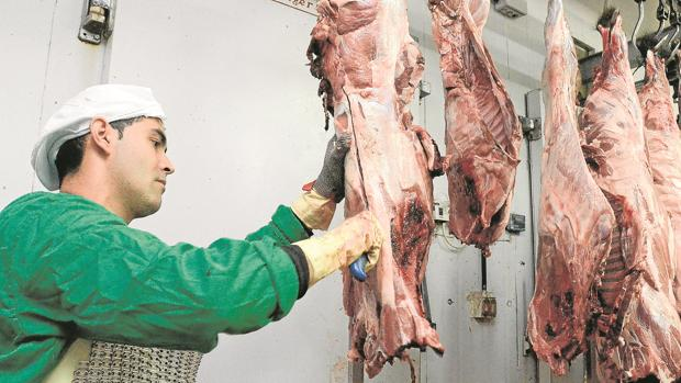 Un trabajador corta un ejemplar en una empresa de despiece y envasado de carne de caza