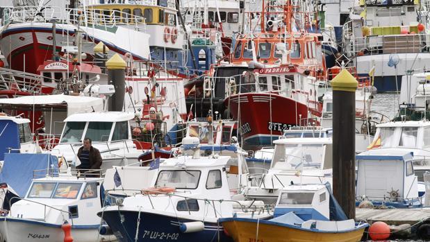 Barcos amarrados a puerto en Burela