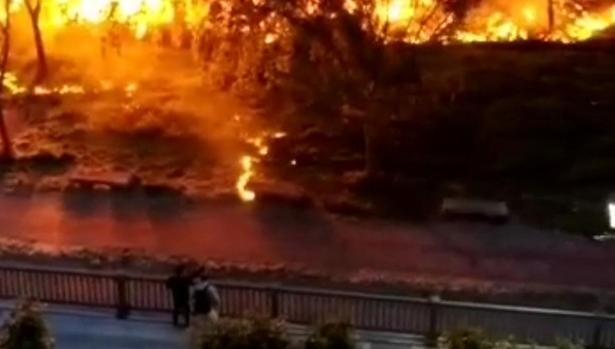 Imagen del incendio registrado a orillas del Carrión en Palencia
