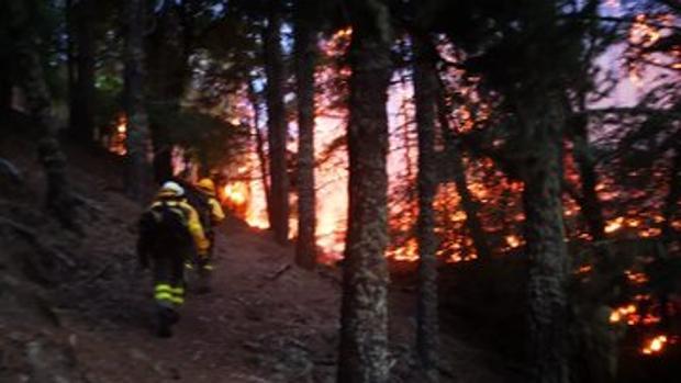 El incendio de Gran Canaria ya ha devorado 6.000 hectáreas y ha obligado a evacuar a unas 9.000 personas