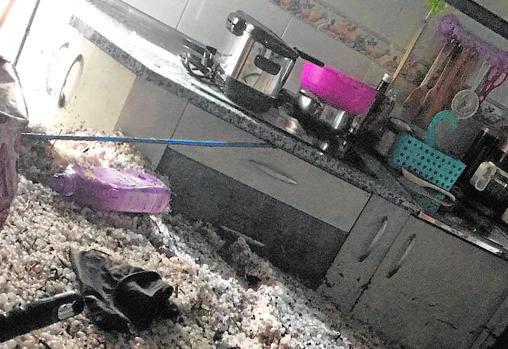 Destrozos por el granizo en una vivienda baja