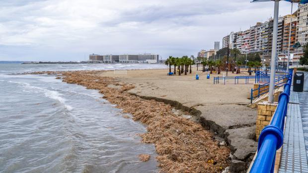 Imagen de archivo de la playa de El Postiguet