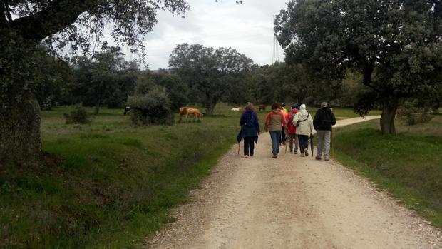 Los paseos descubren lugares singulares de la provincia