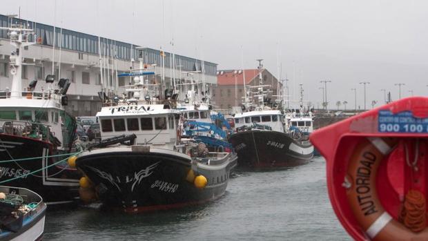 Flota pesquera amarrada en el puerto de Vigo