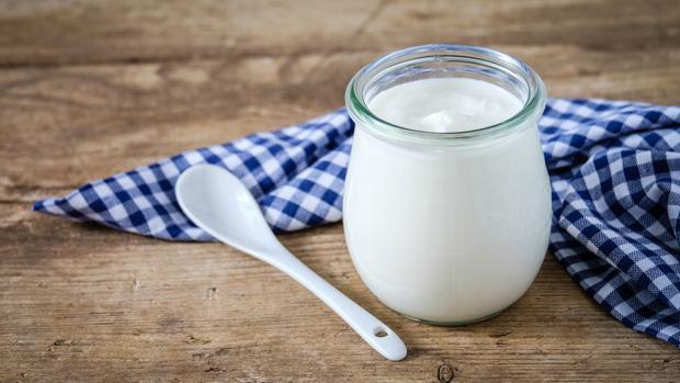 Cual es el mejor yogur probiotico