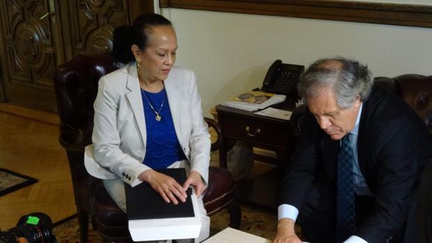 La representante de Venezuela en la OEA firma la carta que pone en marcha el abandono de la organización