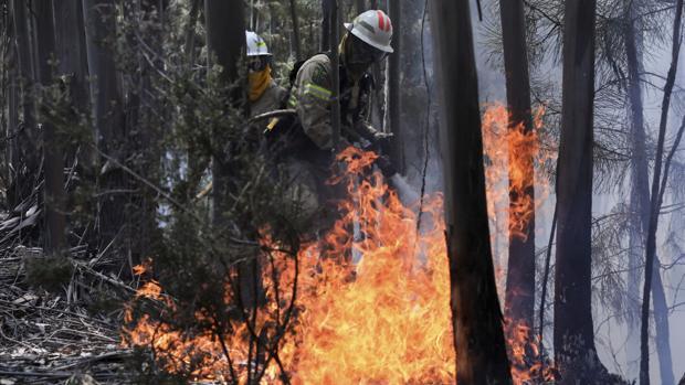 Dos miembros de la Guardia Nacional Republicana (GNR) portuguesa combaten el fuego en Alto da Louriceira