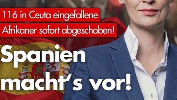 Cartel del parido ultraderechista alemán celebrando las deportaciones