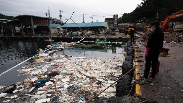 Las autoridades nipones instan a evacuar a 5 millones de personas por el tifón Haishen