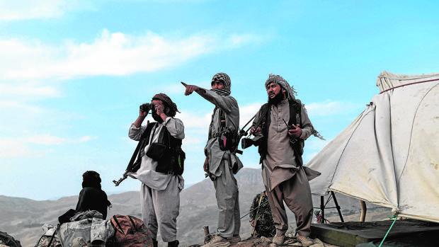 Alarma en el Pentágono por el imparable regreso de los talibanes