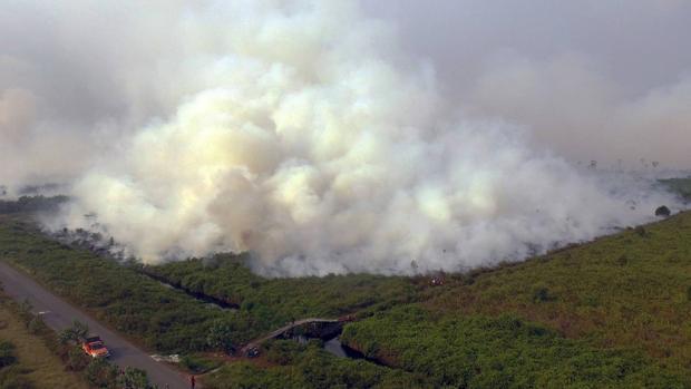 Los incendios que arrasan Indonesia: cinco claves que explican este desastre medioambiental