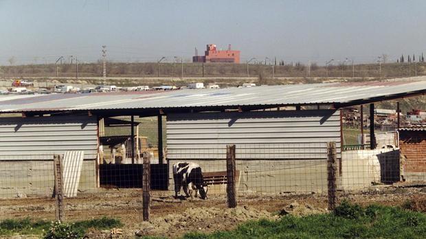 La ganadería no necesita pancartas
