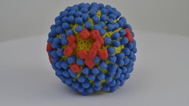 Modelo en 3D del virus de la gripe con sus piruletas naranjas y azules