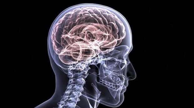 El nuevo estudio solo fue posible debido a las nuevas técnicas explorar células individuales en el cerebro