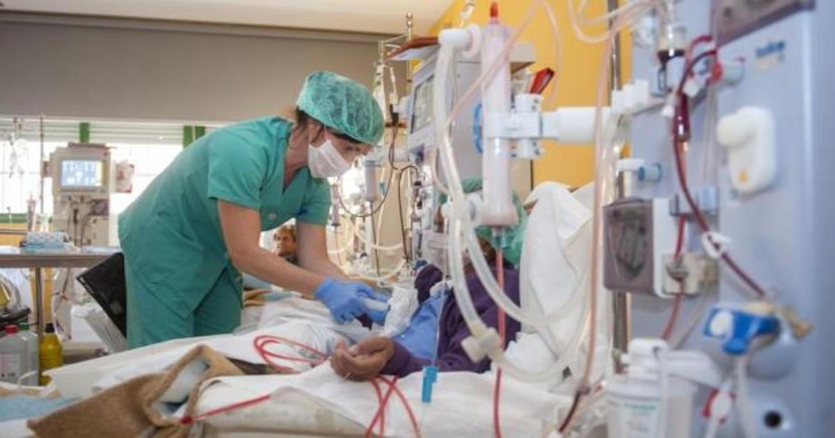 Un estudio pionero español abre la posibilidad de hacer trasplantes de riñón a mayores de 75 años