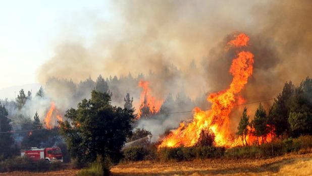 Incendio en Portugal el pasado 24 de julio
